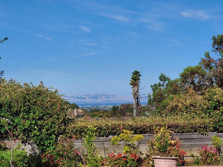 19 Condon Ct San Mateo CA Home. Photo 30 of 31