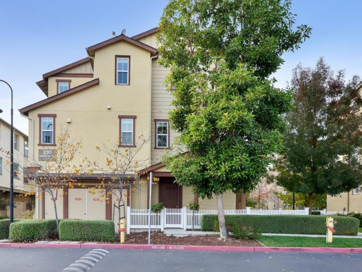 210 Peppermint Tree Ter #4, Sunnyvale, CA, 94086 Townhouse. Photo 1 of 25