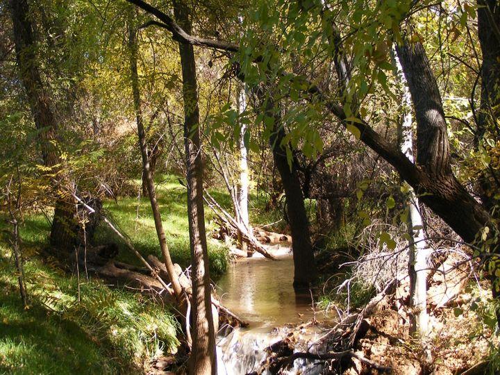 240 S Bonito Ranch Loop Cornville AZ Home. Photo 10 of 10