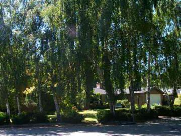 1055 Manzana Pl, Lafayette, CA