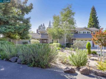 17 Kemp Ct, Roundhill Estate, CA