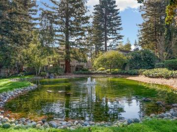 19535 Vineyard Ln, Saratoga, CA