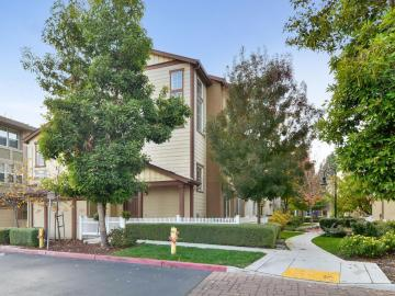 210 Peppermint Tree Ter #4, Sunnyvale, CA, 94086 Townhouse. Photo 2 of 25