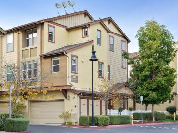 210 Peppermint Tree Ter #4, Sunnyvale, CA, 94086 Townhouse. Photo 3 of 25