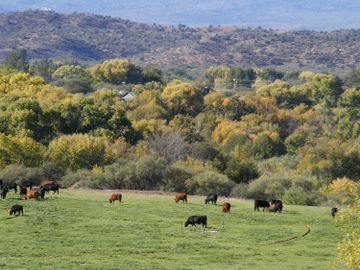 240 S Bonito Ranch Loop Cornville AZ Home. Photo 2 of 10