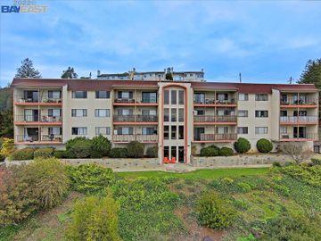 2500 Miramar Ave unit #301, Castro Valley, CA
