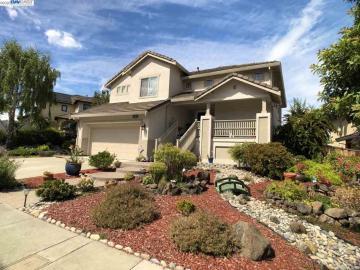 25169 Valley Oak Dr, Gold Creek, CA
