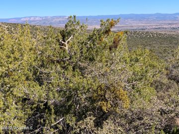 2990 W Quail Springs Ranch Rd, Under 5 Acres, AZ