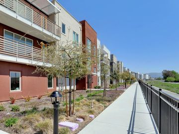 330 Riesling Ave unit #10, Milpitas, CA