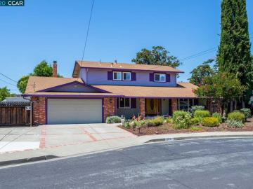 3731 Parktree Ct, Dana Estates, CA