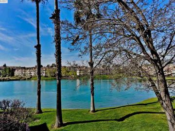 4055 W Lakeshore Dr, Canyon Lakes, CA