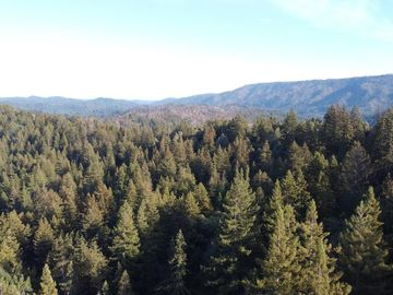 475 Stellar Way, Boulder Creek, CA