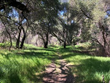 Cachagua, Carmel Valley Village, CA